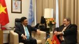 越南政府副总理兼外交部长会见各国领导与外交部长