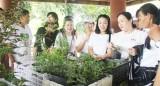TTC: Những người thích trồng cây