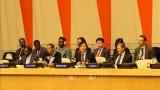 越南与联合国:越南成功担任2020年1月联合国安理会轮值主席