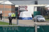 Essex truck victims die of lack of oxygen, overheating: British police