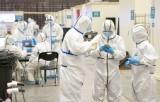 WHO thông báo đang phát triển 4 loại vắcxin có khả năng chống nCoV