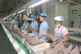 To prepare supply sources of raw materials to stabilize and develop production