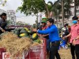 Hơn 65 tấn dưa hấu được bán giúp
