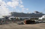 Nhật Bản: 5 quan chức tham gia kiểm dịch tàu Diamond Prince nhiễm bệnh