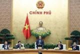 Thủ tướng: Giải quyết tình trạng nông sản 'được mùa, mất giá'