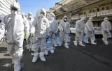 Hàn Quốc: Số trường hợp nhiễm CoVID-19 lên mức hơn 2.000 ca