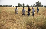 Từ tháng 3 đến 5, Trung Bộ có nguy cơ xảy ra khô hạn và xâm nhập mặn
