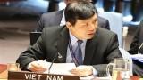 越南支持联合国安理会解决非洲面临的恐怖和暴力极端主义威胁