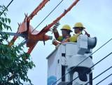 Điện lực Bình Dương: Bảo đảm cung ứng đủ điện cho sản xuất, sinh hoạt