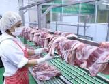 Thủ tướng yêu cầu kiên quyết giảm giá thịt lợn dưới 60.000 đồng mỗi kg