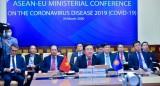 新冠肺炎疫情:越南积极参与和推动疫情防控的双多边合作