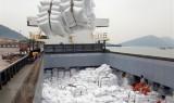 3月24日起越南暂停出口大米