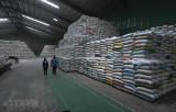 TP.HCM: Ý kiến từ doanh nghiệp về việc tạm dừng xuất khẩu gạo