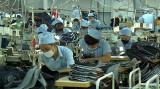 Doanh nghiệp rất cần hỗ trợ để duy trì, phát triển sản xuất