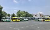 Tạm ngừng hoạt động các tuyến xe buýt từ ngày 30-3