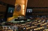 Đại hội đồng LHQ thông qua nghị quyết thứ hai về dịch COVID-19