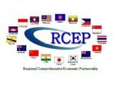 RCEP各成员国鼓励印度重返谈判进程