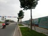 Diễn biến mới vụ án tại Tổng Công ty Sản xuất - Xuất nhập khẩu Bình Dương: Công ty Tân Phú thế chấp sổ đỏ khu đất 43 ha, bảo lãnh vay 350 tỷ đồng
