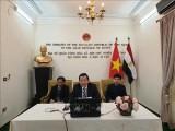 Webinar on President Ho Chi Minh held in Egypt