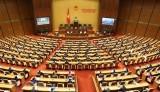 越南十四届国会九次会议隆重开幕