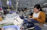 Hiệp định EVFTA: Cơ hội giúp doanh nghiệp lấy lại đà tăng trưởng
