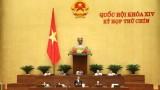 越南第十四届国会第九次会议公报(第八号)