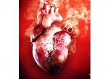 Tác hại của thuốc lá - có thể bạn chưa biết: Thuốc lá gây ra hơn 25 loại bệnh
