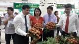 越南清河荔枝和无公害农产品展销会开幕
