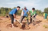 Thành đoàn Thủ Dầu Một: Phát động Tết trồng cây đời đời nhớ ơn Bác