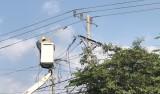 Bảo đảm an toàn lưới điện vào mùa mưa
