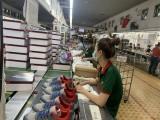 Xuất khẩu vào thị trường ASEAN:  Doanh nghiệp Việt cần tập trung khai thác