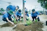 Thành đoàn Thủ Dầu Một tổ chức Ngày thứ bảy tình nguyện