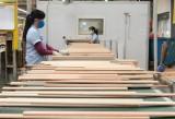 外国直接投资企业:恢复生产,为实现突破注入动力
