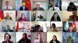 """越南代表出席""""冲突中的性暴力问题""""安理会视频公开会"""