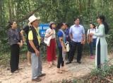 建安森林:留下许多革命活动印记之地