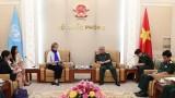 """国防部副部长阮志咏:越南为""""妇女与联合国维和行动""""国际会议做好准备"""