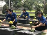 Đoàn khối Cơ quan – Doanh nghiệp tỉnh Bình Dương: Ra quân làm đẹp các phần mộ liệt sĩ