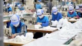 越南纺织企业承诺提供充足的抗菌布口罩