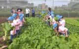 Học kỳ hồng dành cho con em công nhân và hành trình thầy thuốc trẻ làm theo lời Bác