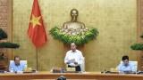 阮春福总理主持召开政府七月份例行会议