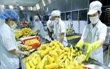 《越南与欧盟自由贸易协定》: 越南农产品提高质量和创建品牌