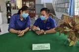 Huyện đoàn Bắc Tân Uyên: Tuyên truyền cài đặt ứng dụng Bluezone