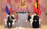 越南国会主席阮氏金银会见柬埔寨国会主席韩桑林
