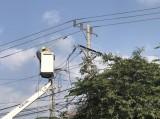 """Phòng, chống tai nạn điện mùa mưa: Khẩn trương xóa """"mạng nhện"""" trên cột điện"""