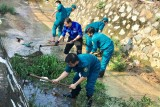 宜安市共青团举行绿色行军志愿活动