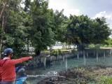 Tăng cường công tác quản lý, chống sạt lở ven sông - Kỳ 1