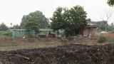 TX.Tân Uyên: Kiên quyết di dời cơ sở chăn nuôi heo gây ô nhiễm