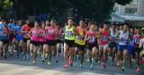 2020东盟轮值主席年:2020年旺盛银行河内马拉松比赛吸引近7000人报名参加