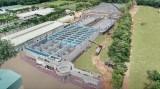 Công ty Cổ phần Nước - Môi trường Bình Dương: Nhà đầu tư kỳ vọng sự tăng trưởng bền vững