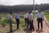 Văn phòng Điều phối nông thôn mới Trung ương: Khảo sát công tác xây dựng nông thôn mới tại huyện Bàu Bàng